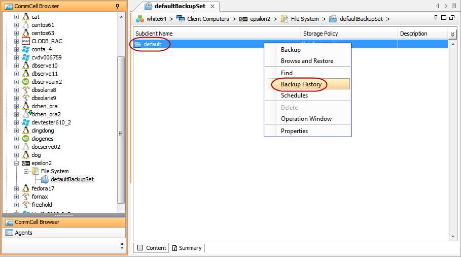 Backup - Linux File System