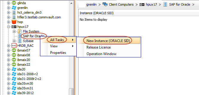 IntelliSnap - Configuration - SAP Oracle
