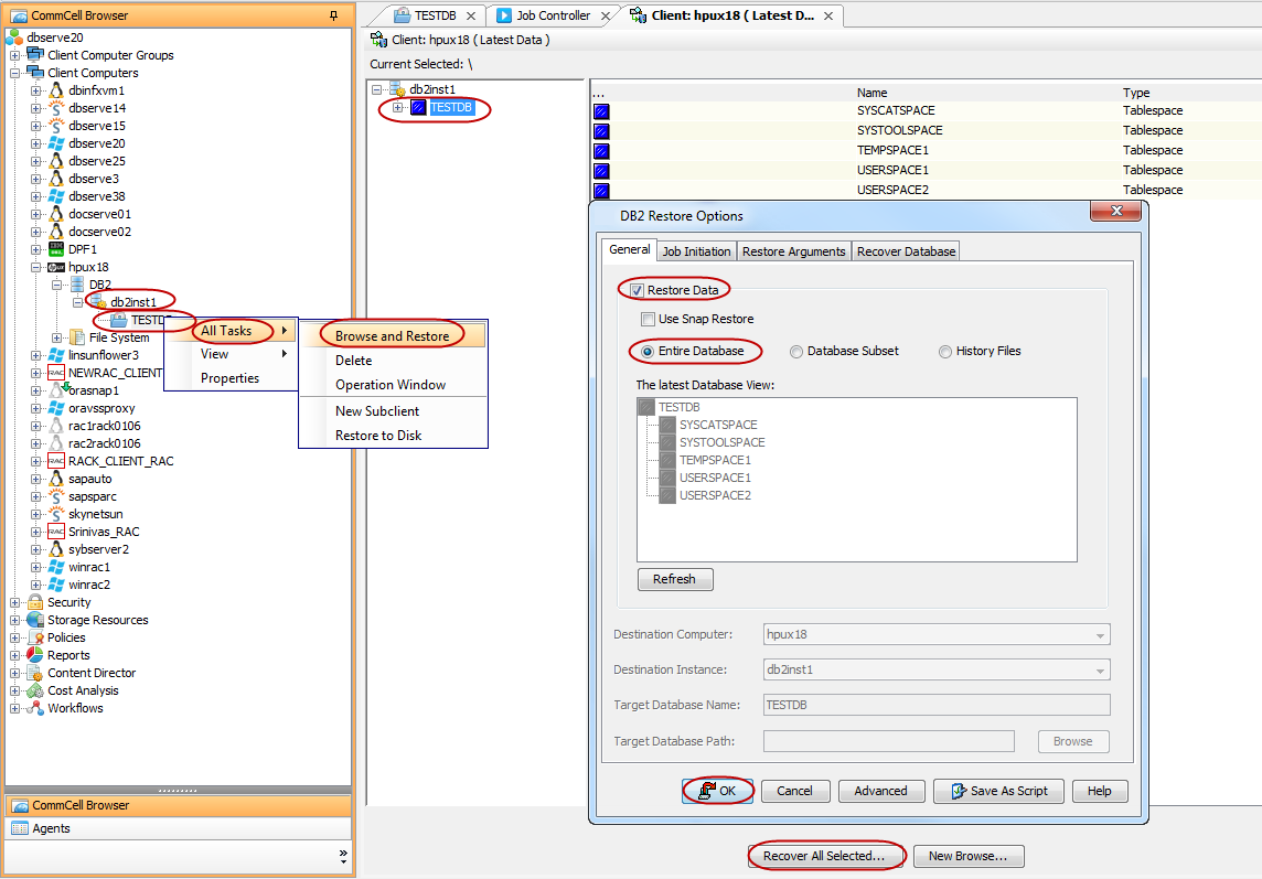 Advanced Restore - FlexFrame for DB2