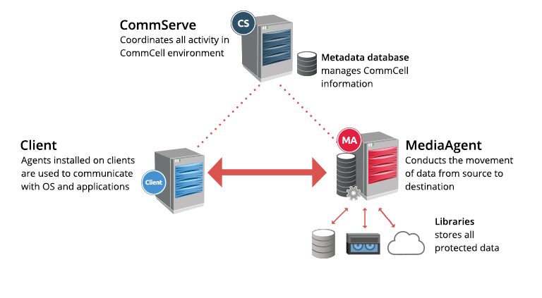 CommCell Environment Overview